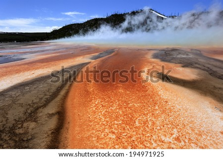 Geyser surrounded by Algae, bacterial layers, Yellowstone Nationl Park, USA - stock photo