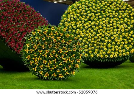 GHENT, BELGIUM - APRIL 23: The Ghent Floralies (de Gentse Floralien ) 34th edition of prestigious flower and plant exhibitions on April 17-25. April 23, 2010 in Ghent (Gent), Belgium. Bromelia - stock photo