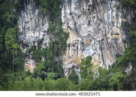 Ghost mountain(Pee Ta Khon)of Miracle at Karos in Krabi province,Thailand   - stock photo