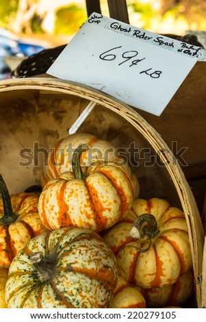 Ghost Rider Squash/Ghostrider is a variety of Winter squash - stock photo