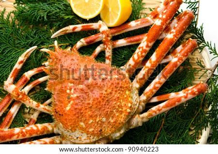 giant crab - stock photo