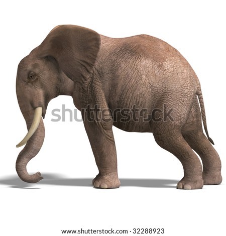 giant elephant. 3D render with clipping path and shadow over white