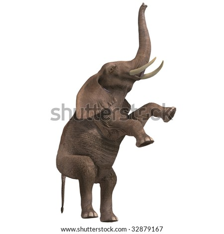 giant elephant. 3D render with clipping path and shadow over white - stock photo