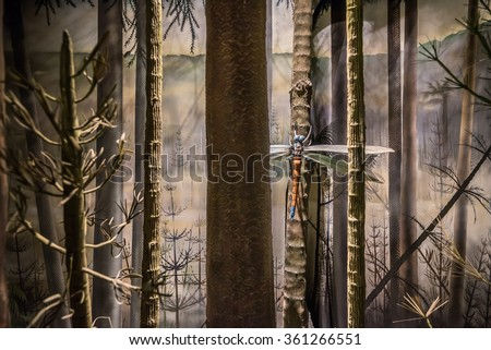 Giant Meganeura dragonfly depicted in a forest in the  Carboniferous period.