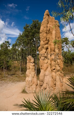 Giant termite mound in the Australian outback