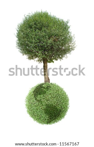 Giant tree growing on green Earth globe isolated on white background - stock photo