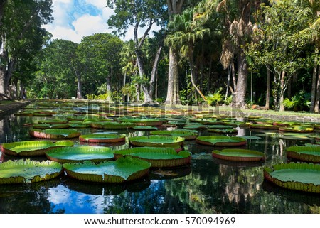 Small Fountain Park Stock Photo 151999316 Shutterstock