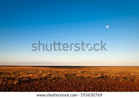 Gibber and Mitchell Grass plains in the evening light, Sturt Desert, outback New South Wales, Australia. After good summer rains in early 2010 - stock photo