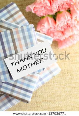 Gift and pink carnations flower for Mother's Day - stock photo
