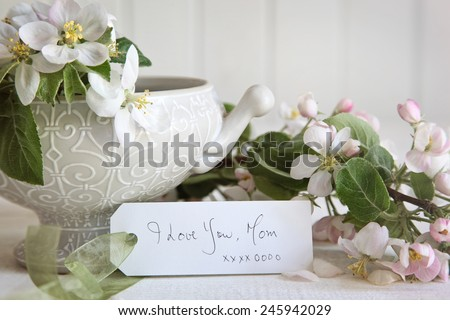 Gift card with apple blossom flowers in vase - stock photo