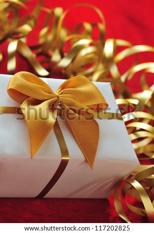 Gift in the package with ribbon