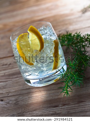 Gin with lemon and juniper branch on  old wooden table - stock photo