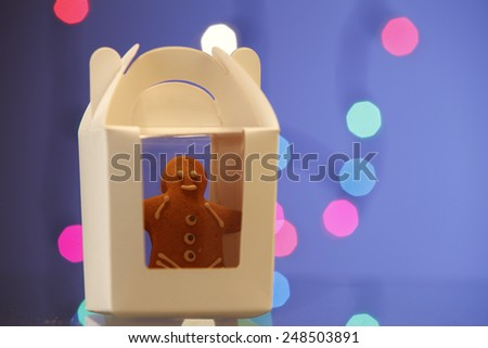 ginger bread man well pack in a container - stock photo