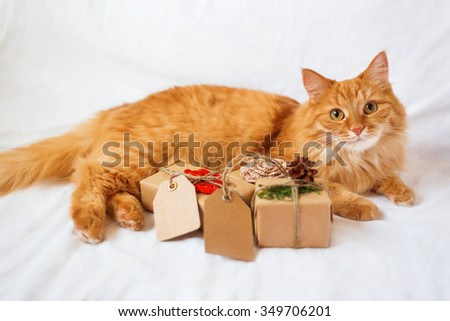 Ginger cat lies on bed with stack of christmas presents. Gifts are wrapped in craft paper and have empty tags for your text.