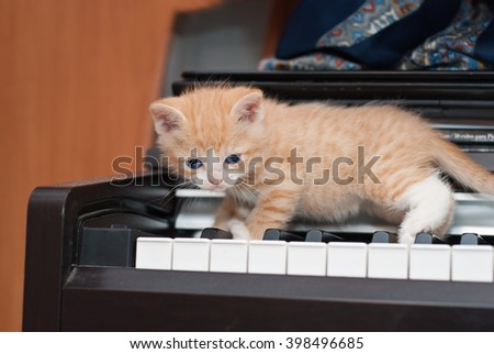 Ginger kitten with blue eyes walking on the piano keys. Soft focus with shallow depth of field.