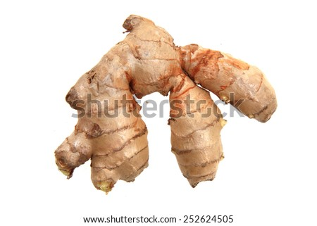 ginger root isolated on the white background - stock photo