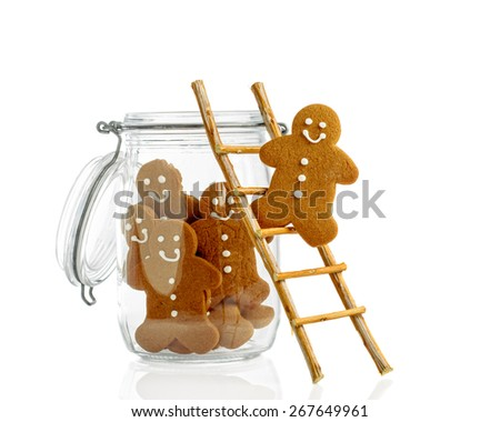 Gingerbread climbing ladder into cookie jar on a white background - stock photo