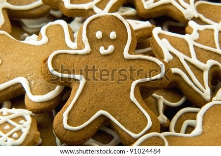 Gingerbread cookie - stock photo
