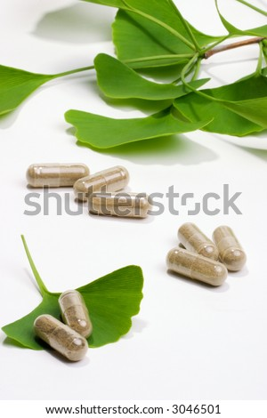 Ginkgo Biloba extract pills and fresh Ginkgo Biloba leaves best suited for aged people alternative medicine ads - stock photo