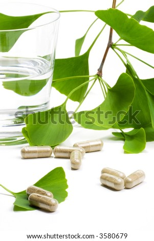 Ginkgo Biloba extract pills and fresh Ginkgo Biloba leaves with glass of water best suited for aged people alternative medicine ads - stock photo
