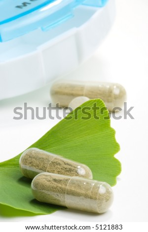 Ginkgo Biloba extract pills. fresh Ginkgo Biloba leaves and pills planner best suited for alternative medicine ads - stock photo