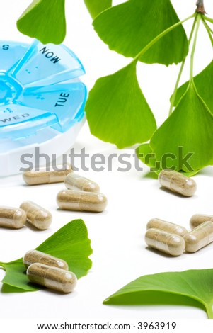 Ginkgo Biloba extract pills. fresh Ginkgo Biloba leaves and pills planner best suited for aged people alternative medicine ads - stock photo