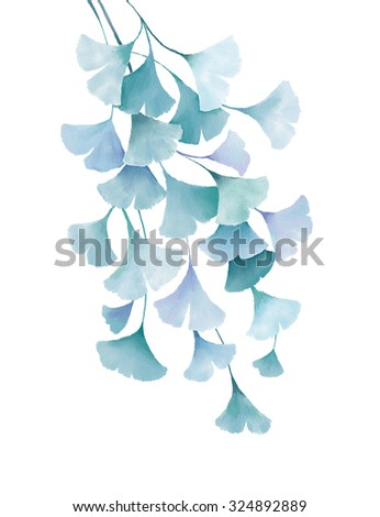 ginkgo biloba watercolor green blue leaves decorative floral drawing illustration isolated on white background wedding invitation greeting cards spring summer tropical plants vintage design - stock photo