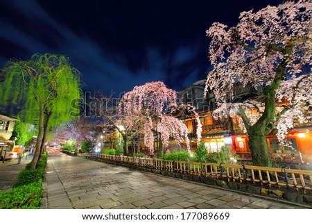 Gion in Kyoto with sakura tree at night - stock photo