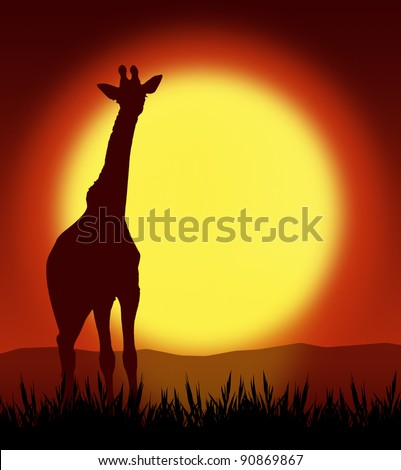 giraffe on grass with sunset