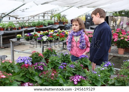 Girl and boy are among the blossoming greenhouse - stock photo