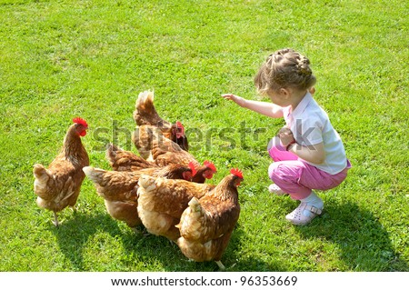 girl and chickens in Lawn - stock photo