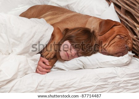 Girl and her dog comfortably sleeping in the bed - stock photo