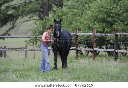 girl and horse in paddock