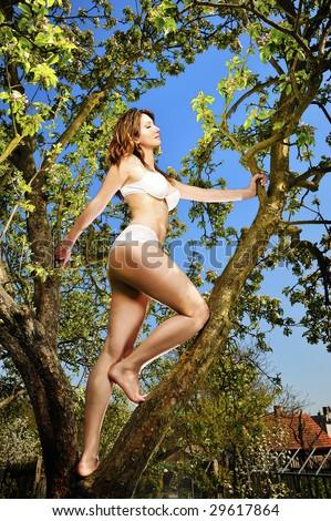 girl and tree - stock photo