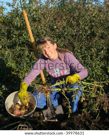 Girl dug potatoes - stock photo
