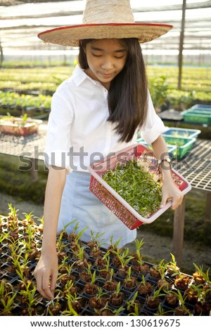 girl farmer, Young Asian girl wearing weave hat collecting plant in orchid farm - stock photo