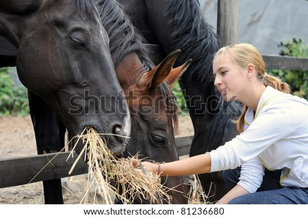 girl feeding horses in the farm in summer day - stock photo