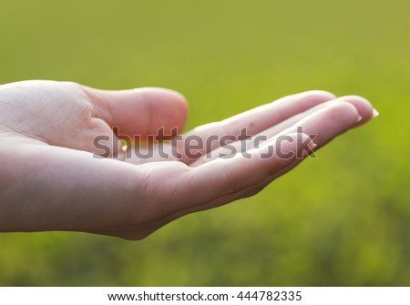 Girl hand on nature on a sunset background