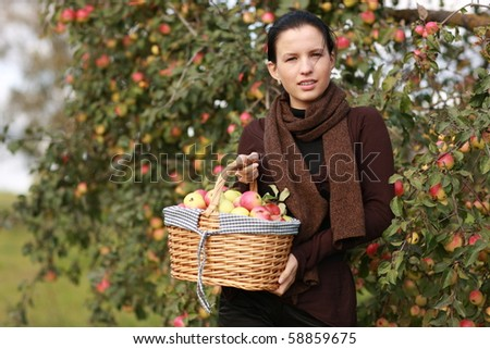 Girl holds picnic basket with apples - gifts of autumn - stock photo