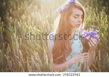 girl in a field in the setting sun with a bouquet of cornflowers. woman with a bouquet of cornflowers - stock photo