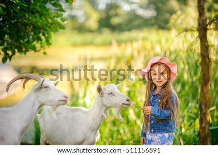 girl in a krsivy hat on the green plena plays and feeds goats, the happy smiling child, games outdoors