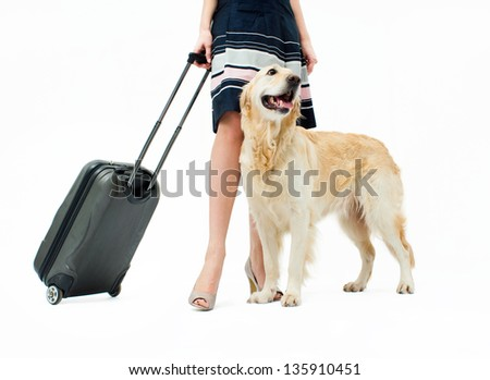 Girl in dress with dog and suitcase on wheels