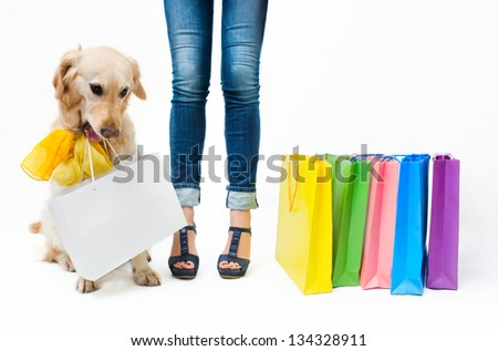 Girl in jeans with the dog and packages - stock photo