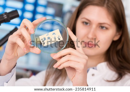 girl in the laboratory of food quality tests cheese - stock photo