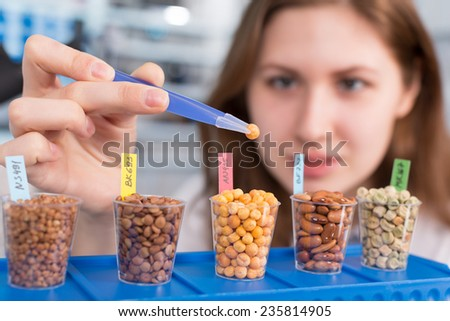 girl in the laboratory of food quality tests  legumes grain - stock photo