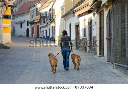 Girl is walking in the old street with two big dogs - stock photo