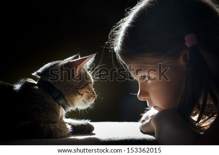 girl looking at the cat - stock photo