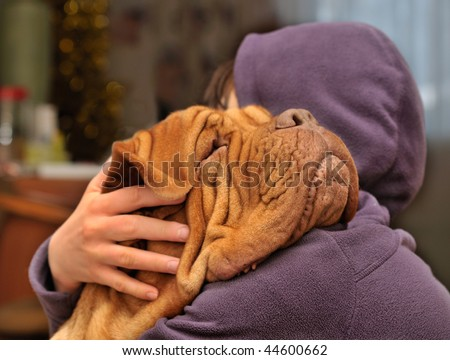 Girl loving and hugging tightly her dog of Dogue De Bordeaux breed - stock photo