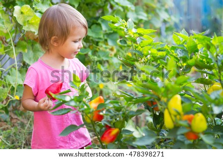 Girl near the beds of pepper in the garden.