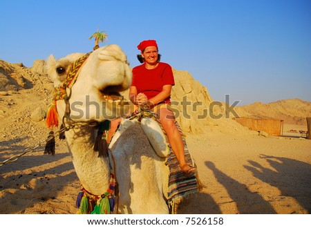 Girl on a funny camel. Eastern Sahara in Egypt.